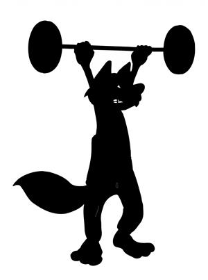 weightlifting fox