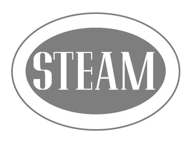 STEAM Picture
