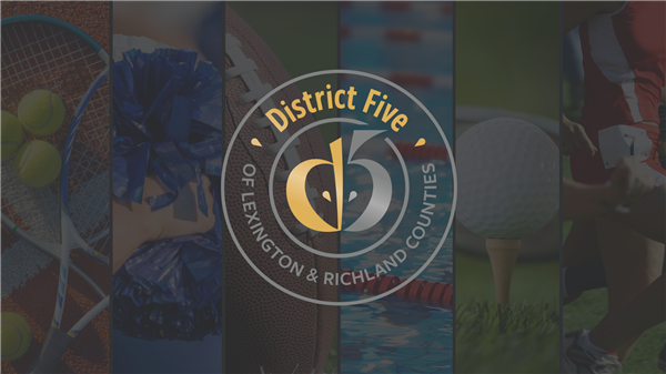 School District Five announces fall 2020 student athlete highlights