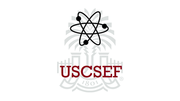 School District Five announces winners of the 2021 UofSC Regional science and engineering Fair