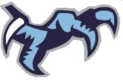 Chapin High Logo