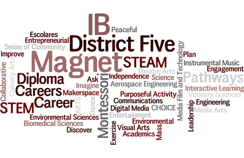Wordle describing our dynamic magnet programs